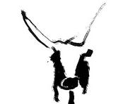 cropped bull head 1